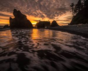 Beach Clouds Coast Fire Golden Hour Hiking La Push Olympic National Park Pacific Ocean reflection Ruby Beach Sea Stacks Silhouette Sunset Trees Washington Waves